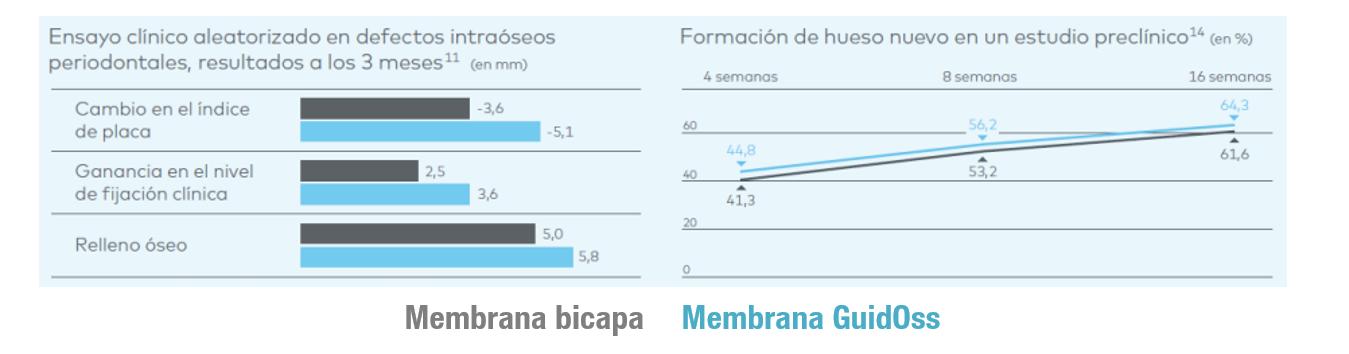membrana--bicapa--guidoss