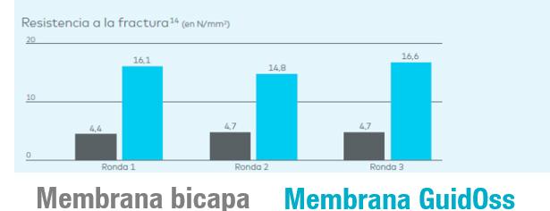 membrana-bicapa--guidoss2